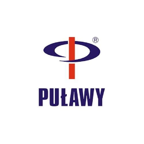 logo-ZA_P-wy